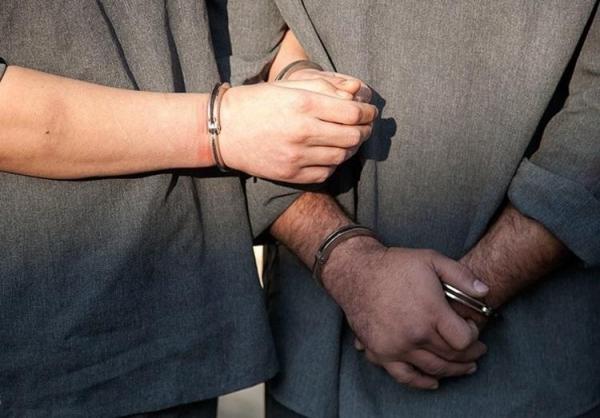 شهردار و یک عضو شورای اسلامی شهر آبسرد بازداشت شدند